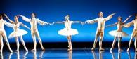 The Royal New Zealand Ballet