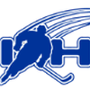 Auckland Ice Hockey Association's profile picture
