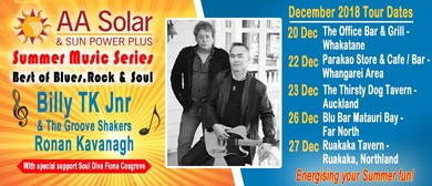 AA Solar Summer Music Series