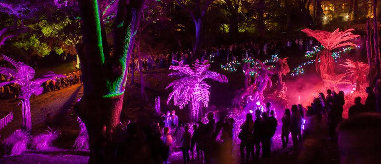 Art in the Dark Returns to Auckland