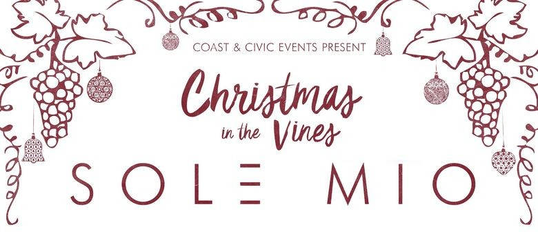 Christmas Is Coming With The Traditional Sol3 Mio Shows In The Vines And Now In The Harbour