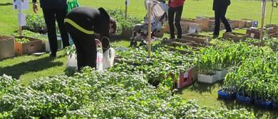 Linkwater School Spring Fair and Taste Outward Bound