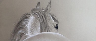 Learn to Draw - Horse In Pencil Workshop