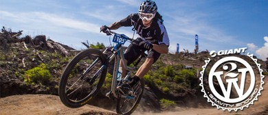 Giant 2W Gravity Enduro - Race 1