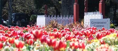 Rotorua Museum TulipFest Activity Trail