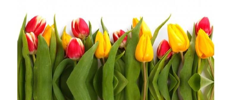Spring Fantasies With Resonance Ensemble