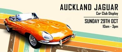 Auckland Jaguar Club Display