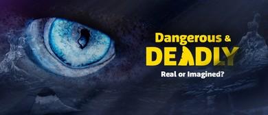 Dangerous & Deadly School Holidays Week 1