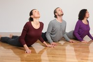 6 Week Yoga for Back & Neck Course
