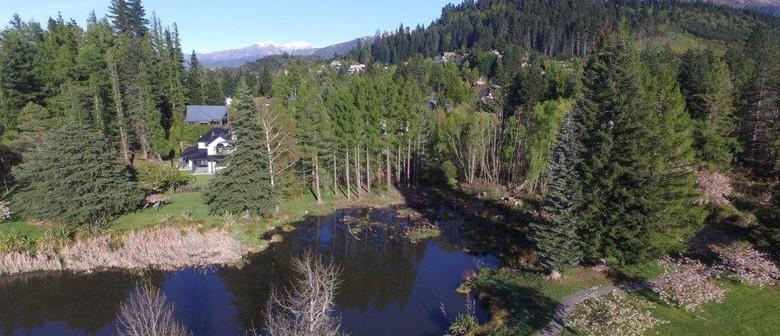 Restoring Hanmer Springs
