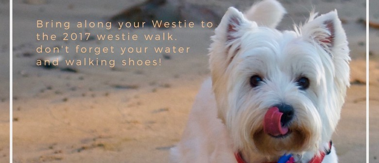 Westie Walk In Western Reserve Orewa