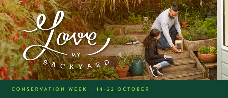 Conservation Week – Planting day