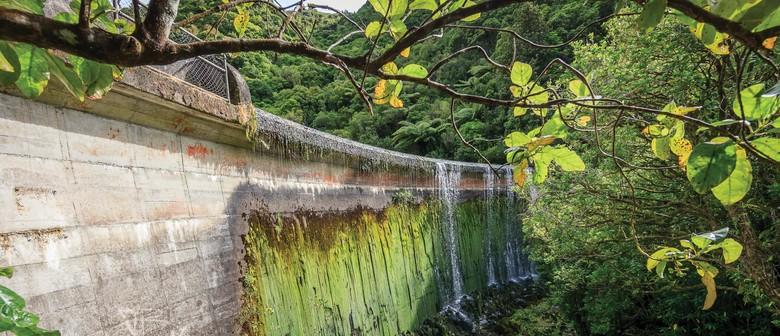 Birchville Dam Walk – Positive Ageing Week 60+