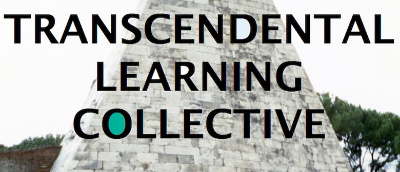 Chronic Fatigue Syndrome & Transcendental Learning Collectiv