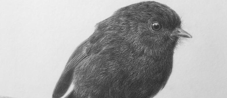 Bevan Smith: Saving Our Species - New Zealand Birds
