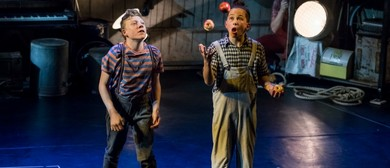 Flying Fruit Fly Circus Kids Workshops