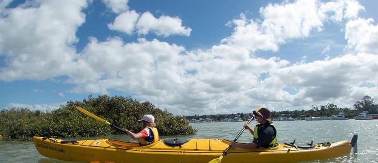 Pollen Island Kayak Day