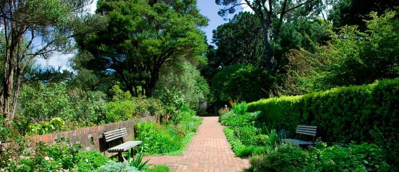 Guided Walk: Herb Garden Walk