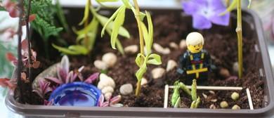 Highwic Miniature Garden Competition