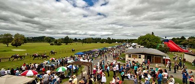 2017 Bayleys Pirongia Boxing Day Races
