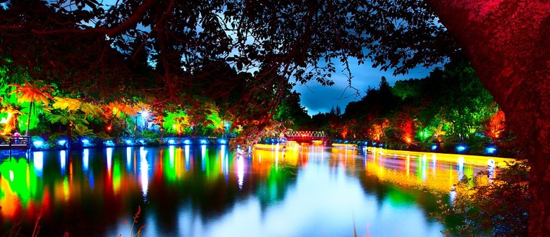 TSB Festival of Lights - TSB Festival Of Lights - New Plymouth - Eventfinda