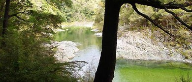 Emerald Pools, Pelorus