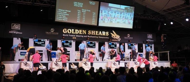 Golden Shears 2018