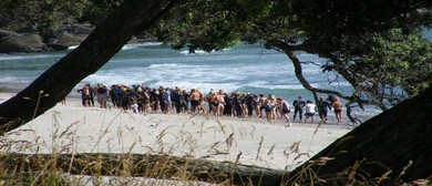 Orokawa to Waihi Beach 2km Ocean Swim