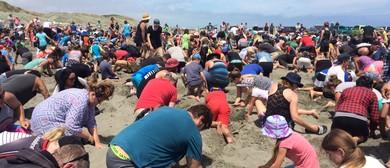 Himatangi Beach Big Dig