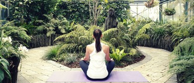 Yoga In the Conservatory