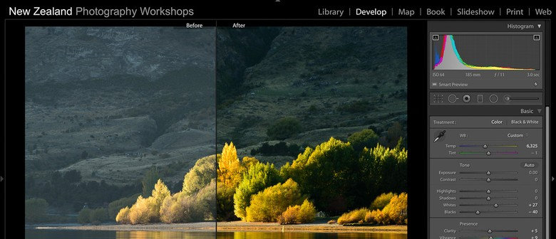 Adobe Lightroom (Photo Editing) Workshop