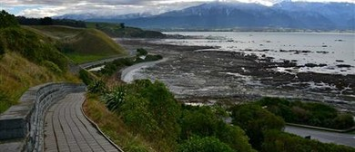 Kaikoura Walk 'n' Talk: CANCELLED