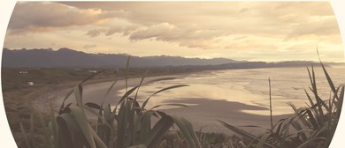 Treasures of Tauranga Bay Community Conservation and Fun Day