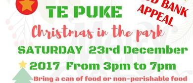 Te Puke Christmas In the Park - Food Bank Appeal