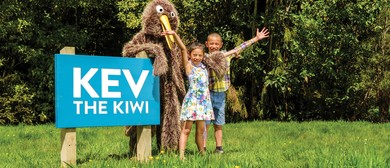 Kev the Kiwi Explores the Gums Loop