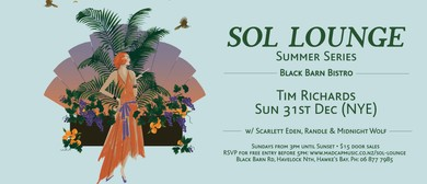 Sol Lounge #2 (NYE): Tim Richards & friends