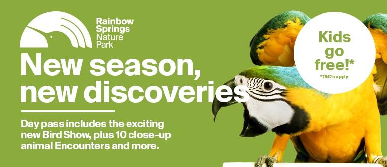 New Free-flight Bird Show