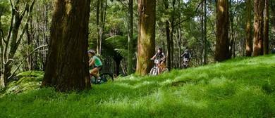 Family Mountain Bike Orienteering Event