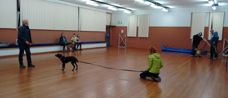Life Skills and Puppy Training