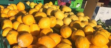 Cobham Court Farmers Market