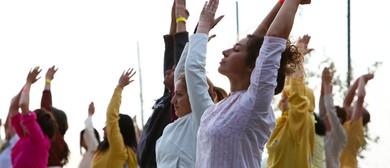 Yoga Class Level 2 - 3
