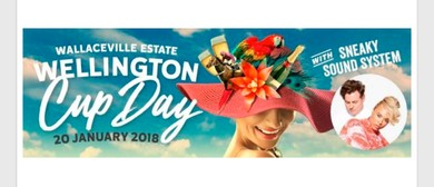 Wellington Cup Race Day Packages 2018
