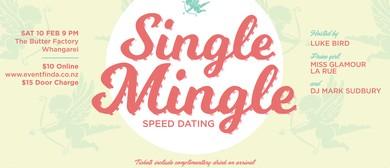 Pre-Valentine Single Mingle