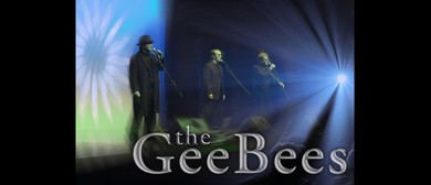 The Gee Bees 70's Show