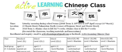 Active Learning Chinese Class School Level 1