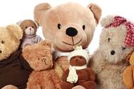 Kapiti Teddy Bears Picnic