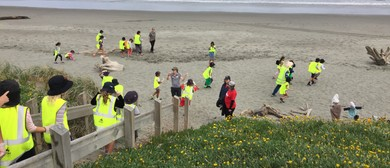 Seaweek - Community Beach Clean