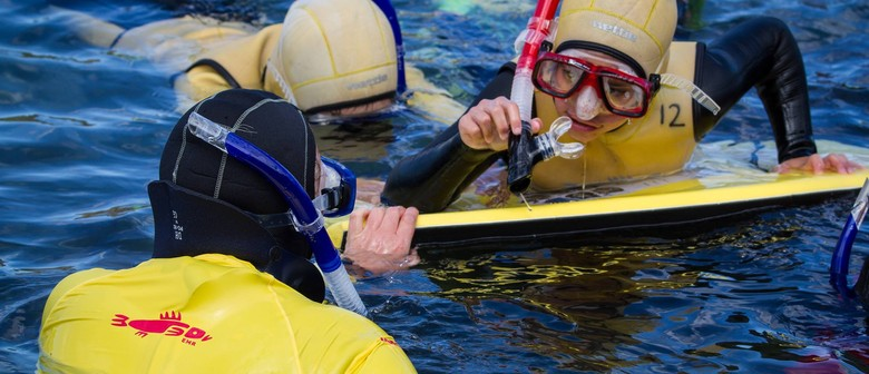 Seaweek - Taputeranga Snorkel Trail