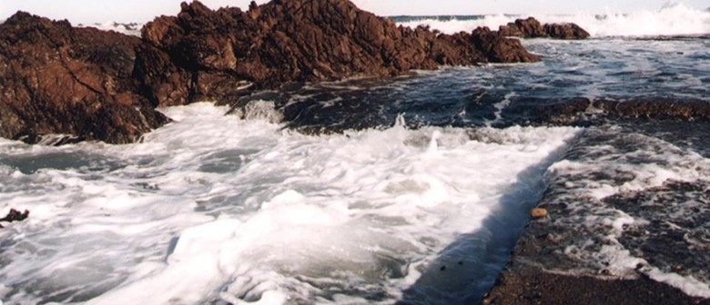 Seaweek - Moa Point Wastewater Treatment Plant Tours