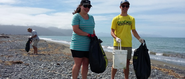Massive Marlborough Clean Up: Rarangi